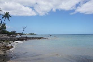 MaunaKea (9)